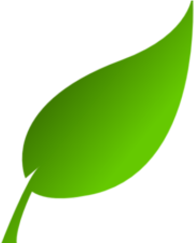 Green Leaves Clipart Clip Art Green.
