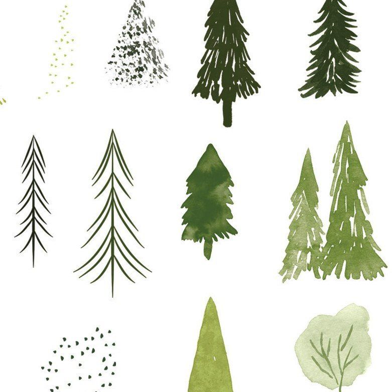 Watercolor forest trees clipart set, abstract woodland.