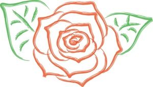 Rose drawings, Drawings and ..
