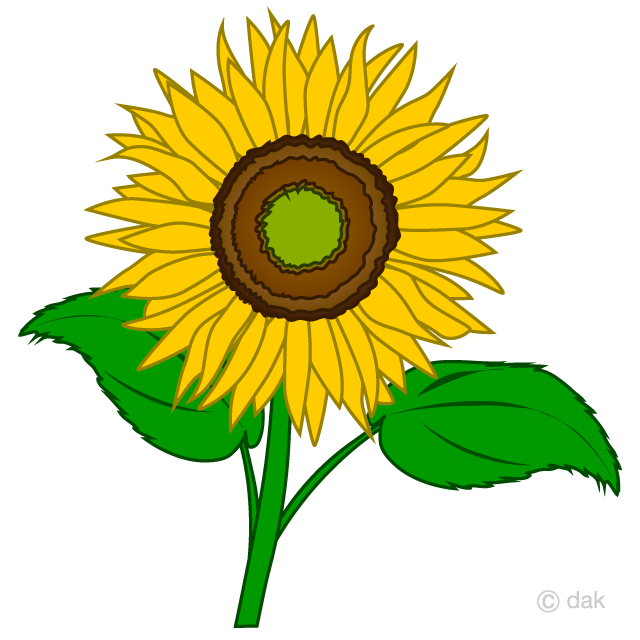 Free Simple Sunflower Clipart Image|Illustoon.