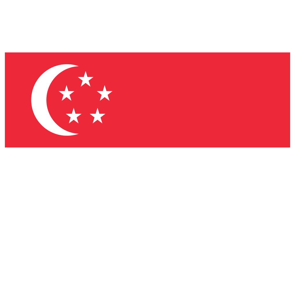 SG Singapore Flag Icon.