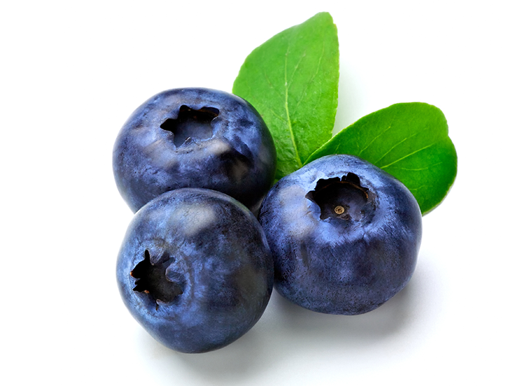 Blueberry PNG Transparent Blueberry.PNG Images..