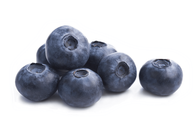 Download Single Blueberry Png.