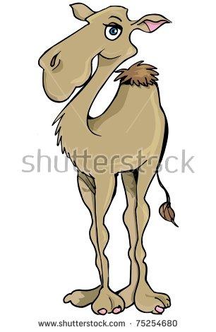 Cartoon Smiling One Hump Camel Desert Stock Vector 75254683.