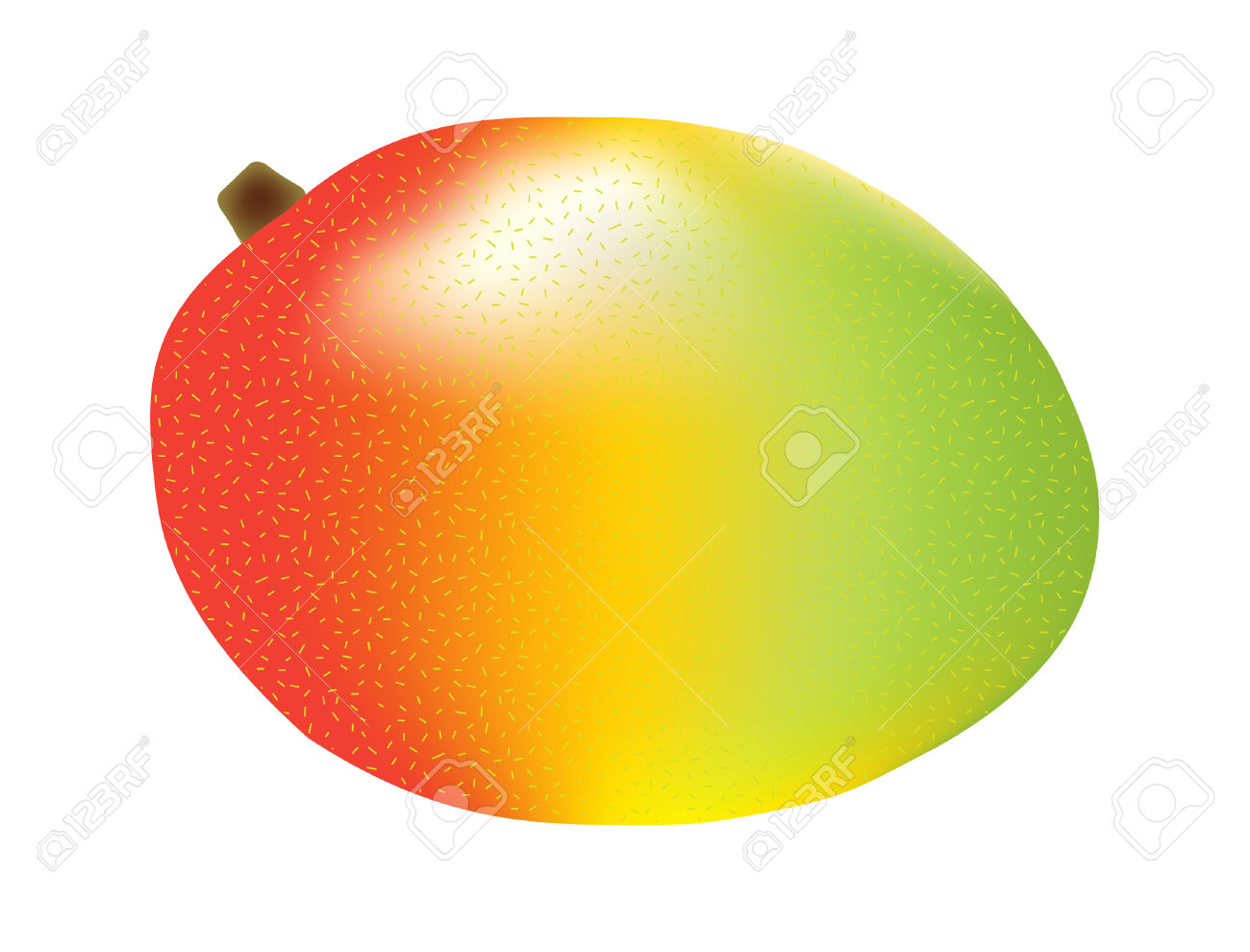 Vector Illustration Of A Single Three Color Mango Royalty Free.