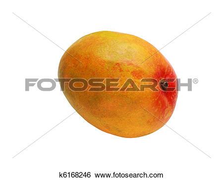 Stock Images of Single Mango k6168246.