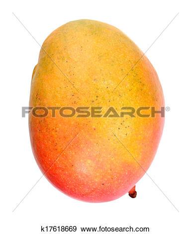 Stock Photograph of sweet single mango k17618669.
