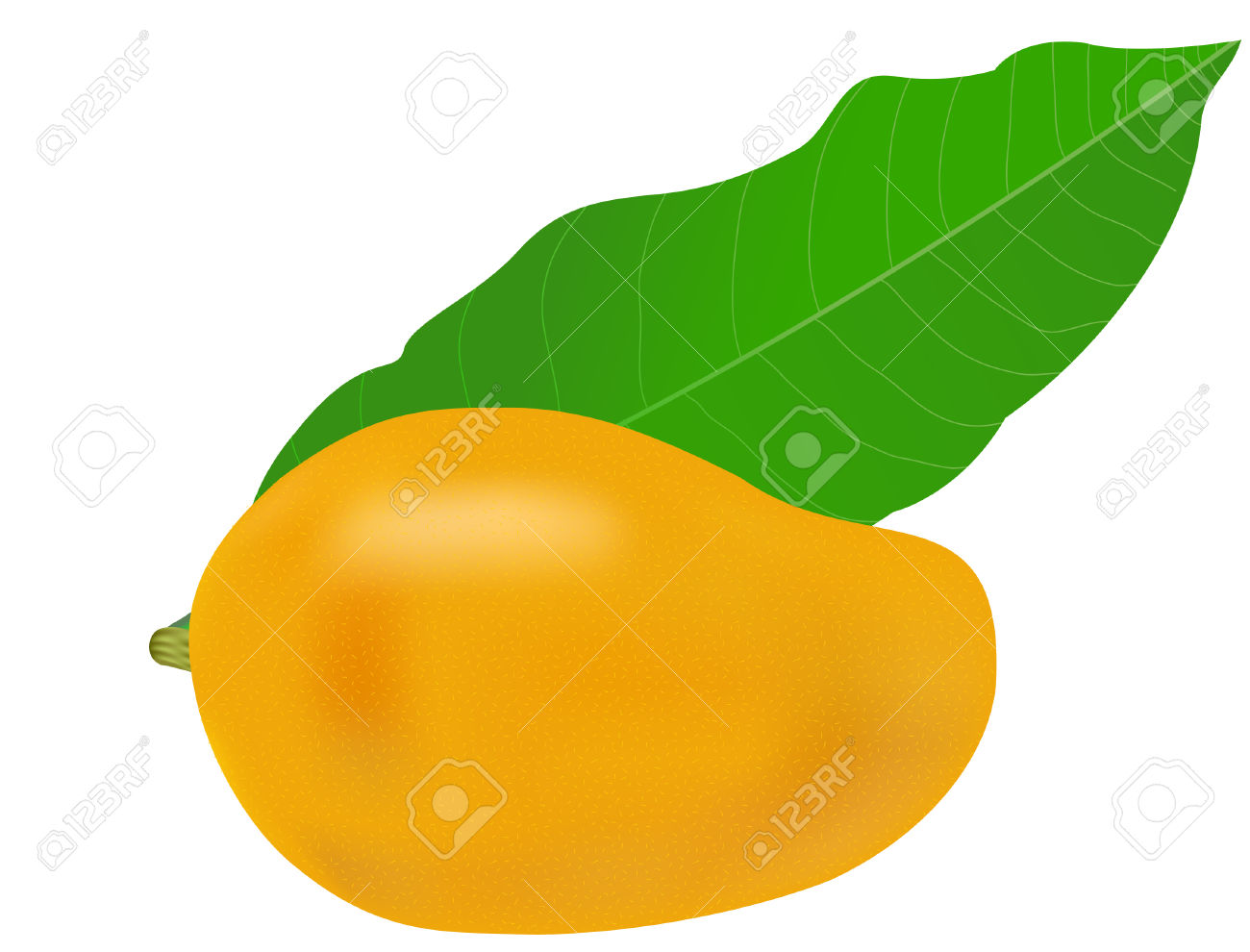 Vector Illustration Of A Mango Fruit And Leaf Royalty Free.