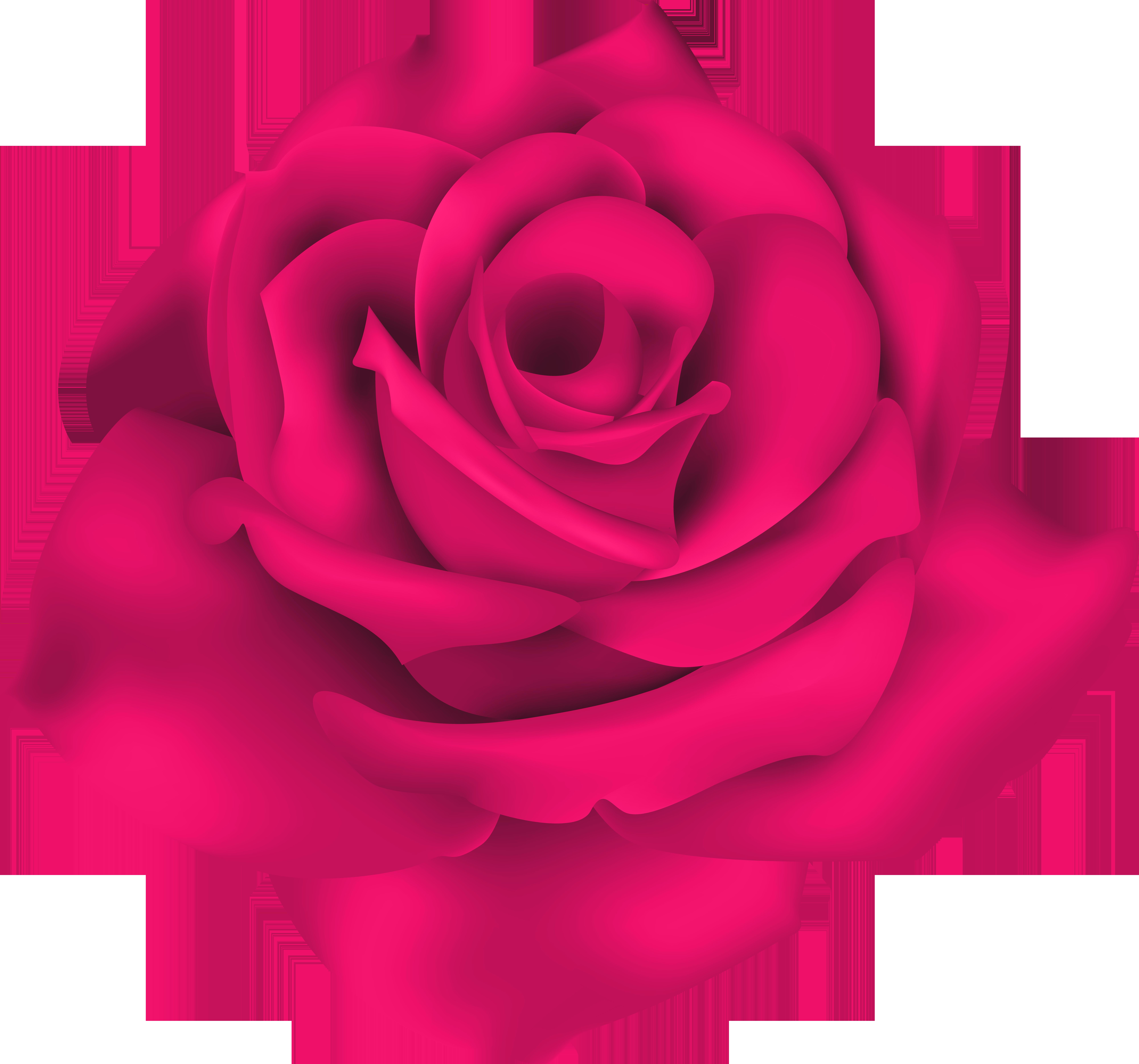 Single Pink Rose PNG Clip Art Image.