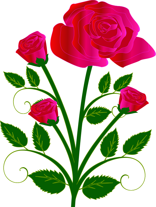 Single pink rose clip art free clipart images.