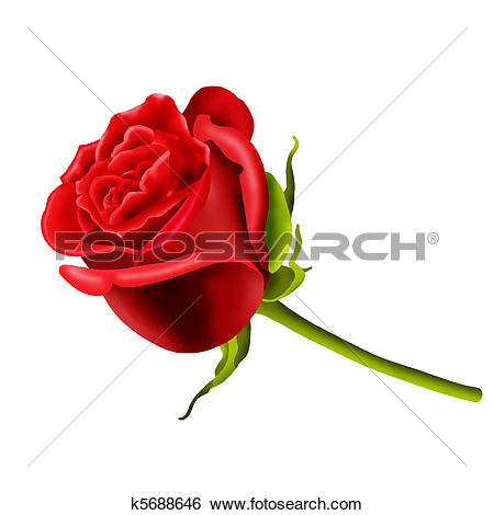 Clipart of Birthday card with single red rose k6278821.