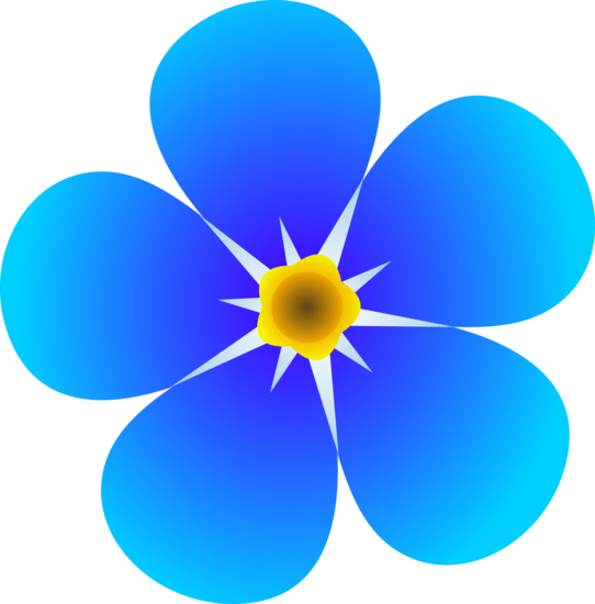 Single Forget Me Not Flower.