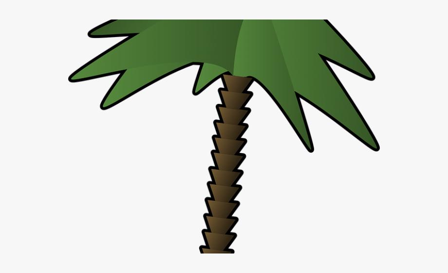 Palm Tree Clipart Single.