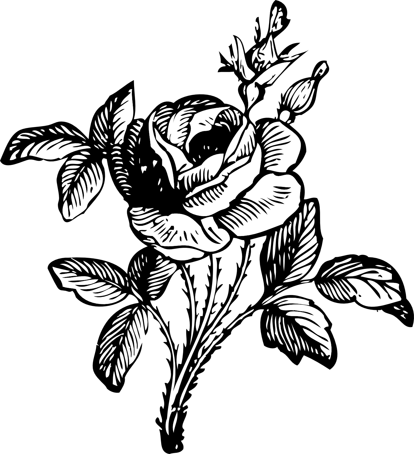 Single Rose Black And White.
