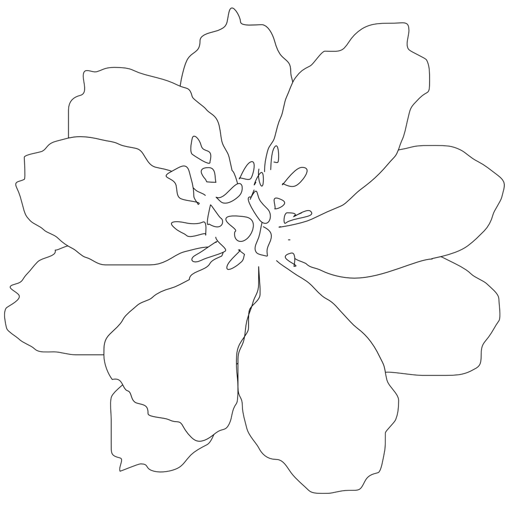 Single White Flower Clipart Clipground