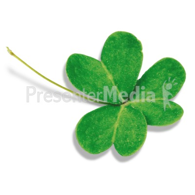 Single Three Leaf Clover.