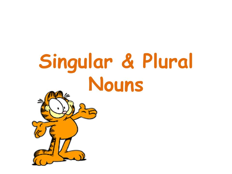 Singular And Plural Clipart.