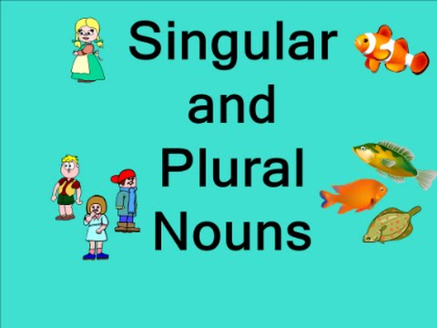singular and plural nouns basic english