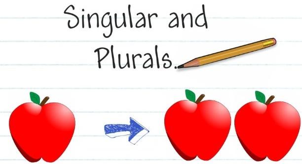 Lesson Plan Of Plurals English Grade 3.