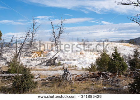 Sinter Terrace Stock Photos, Images, & Pictures.