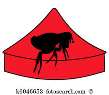 Siphonaptera Stock Illustrations. 22 siphonaptera clip art images.