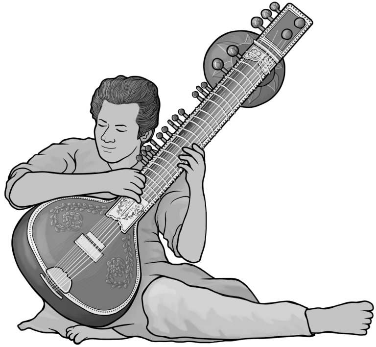 Grayscale free images / sitar.