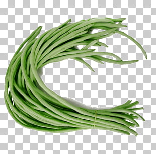 44 Yardlong bean PNG cliparts for free download.