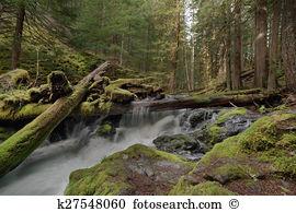 Skamania county Stock Photo Images. 34 skamania county royalty.
