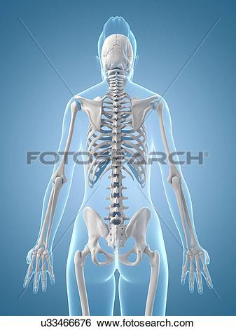 Stock Illustration of
