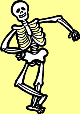 Blank Skeletal System Diagram.