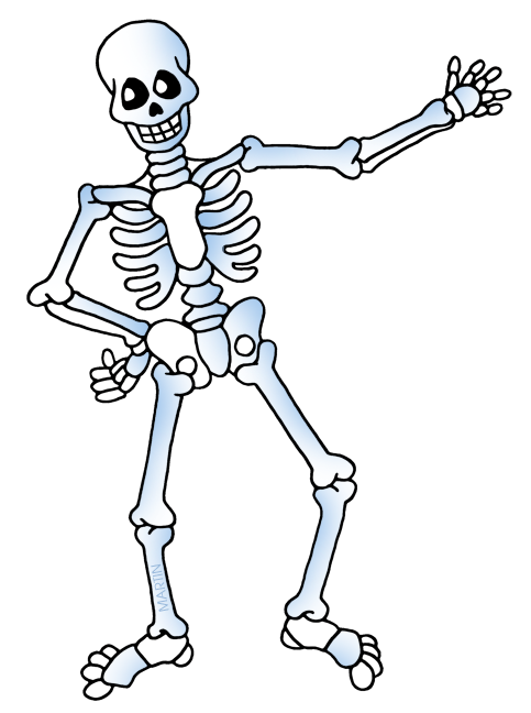 Skeleton Bones.