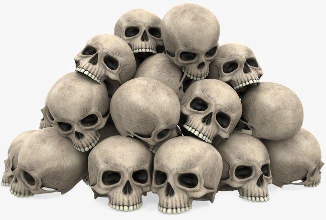 A Bunch Skull, Skull Clipart, Terror, Skull PNG Transparent.