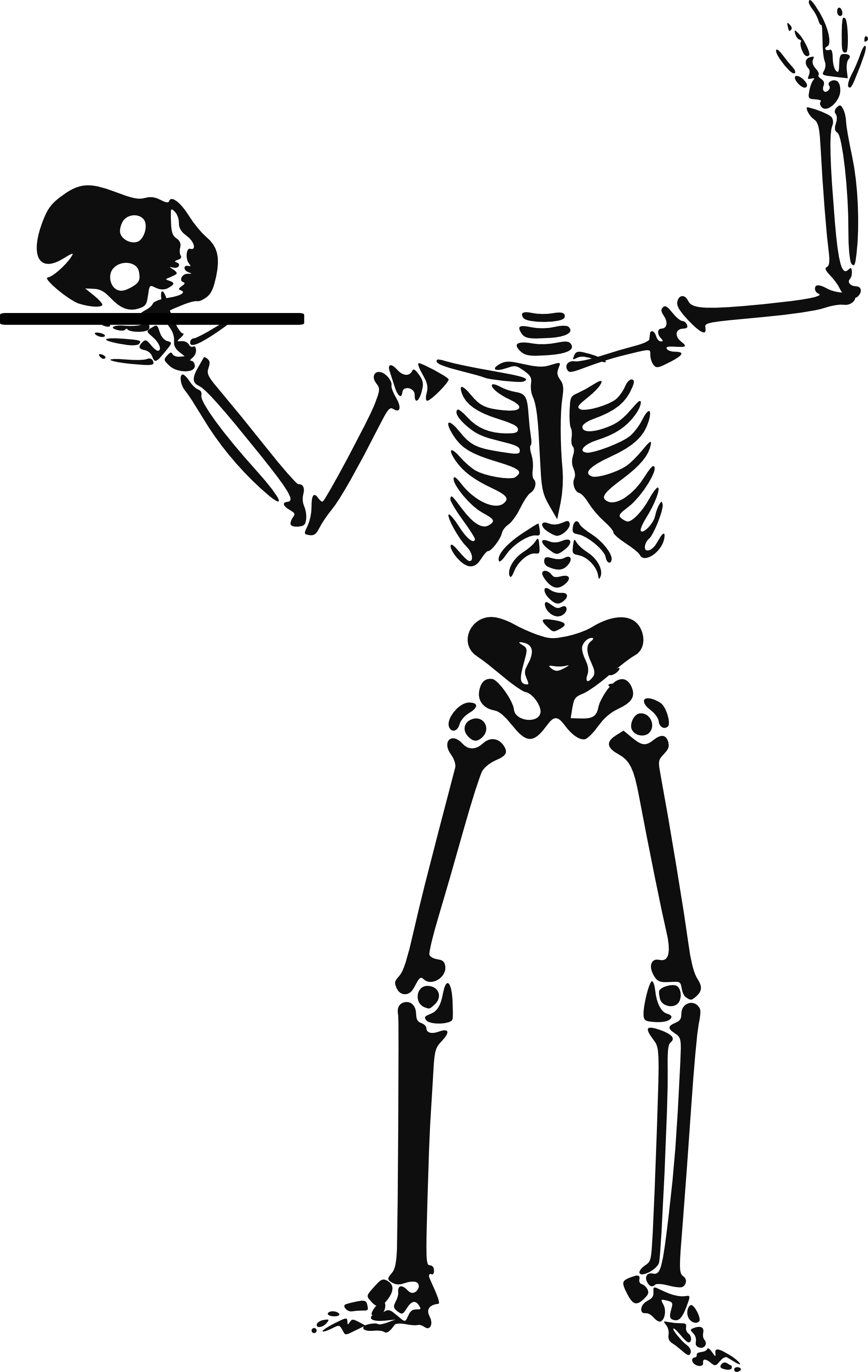 Free Skeleton Clip Art Pictures.