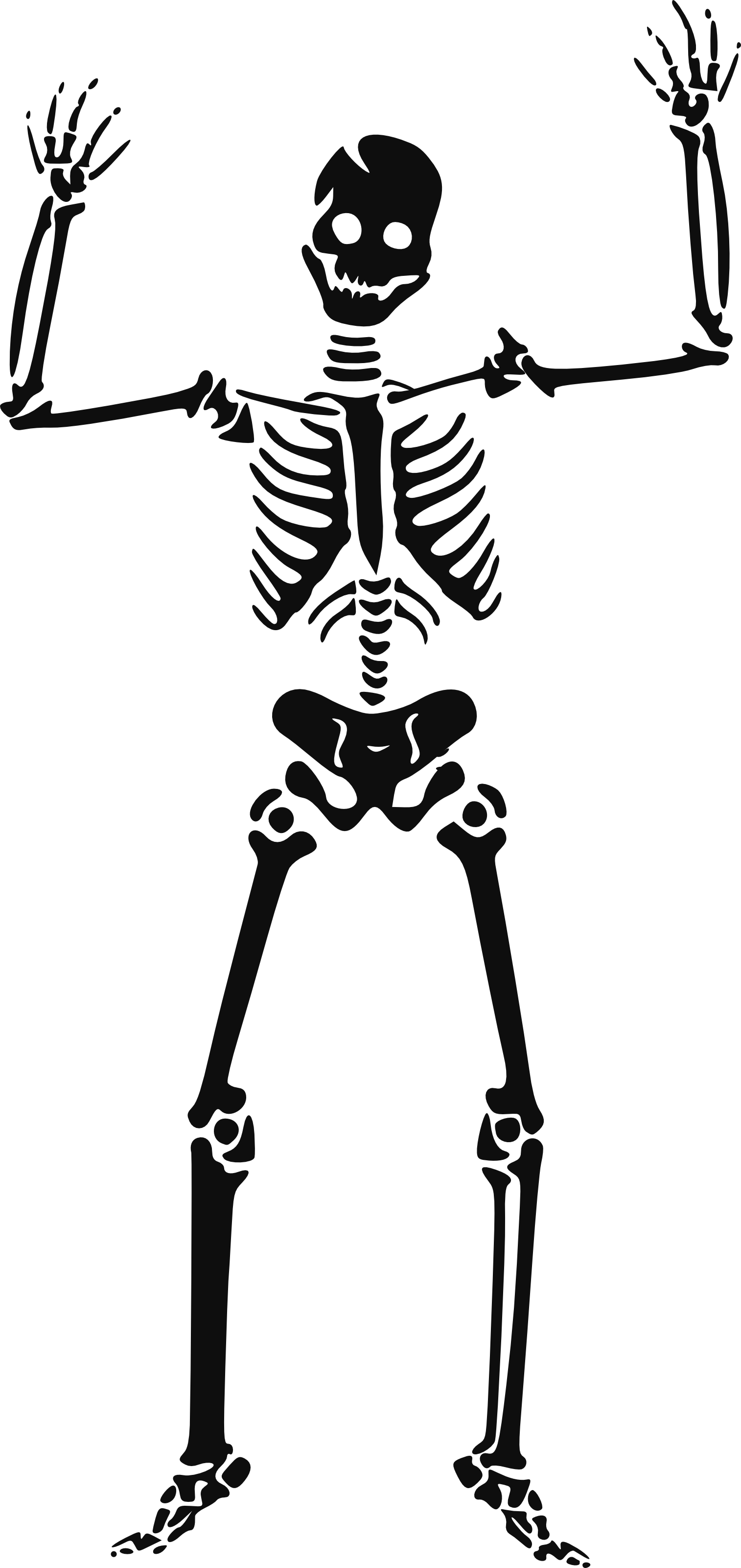 Halloween Skeleton Clipart.
