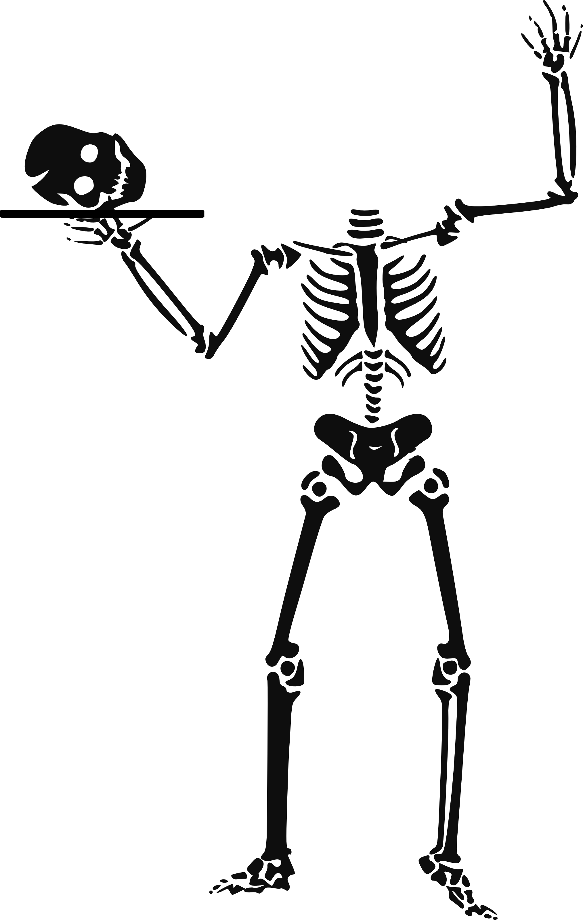 Free Pictures Skeleton, Download Free Clip Art, Free Clip.