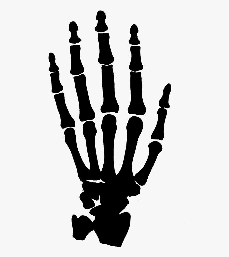 Skeleton Hand Cliparts Free Download Clip Art Png.