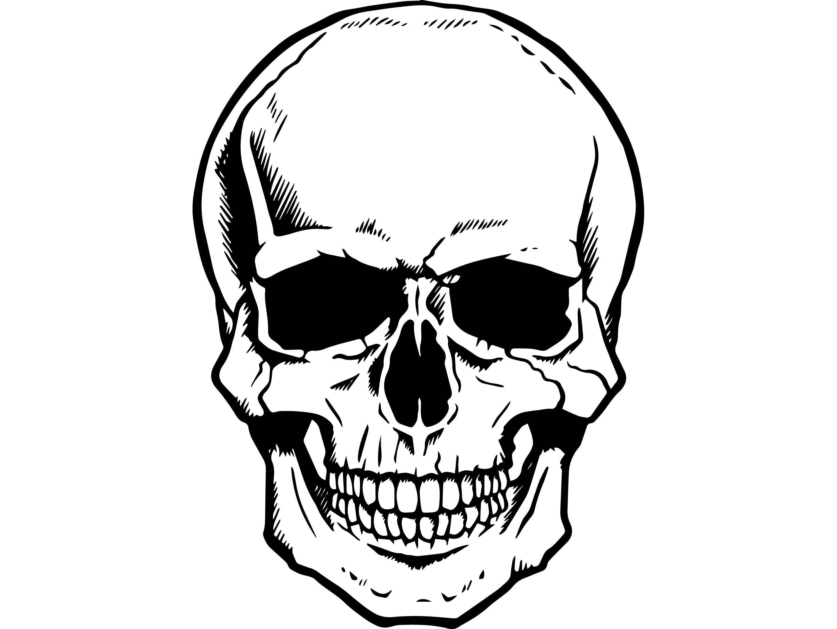 Skeleton head clipart 5 » Clipart Portal.
