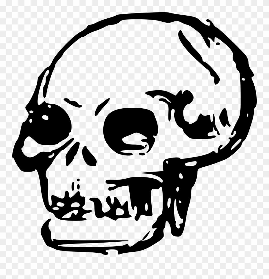 Skeleton Head Clipart Transparent.