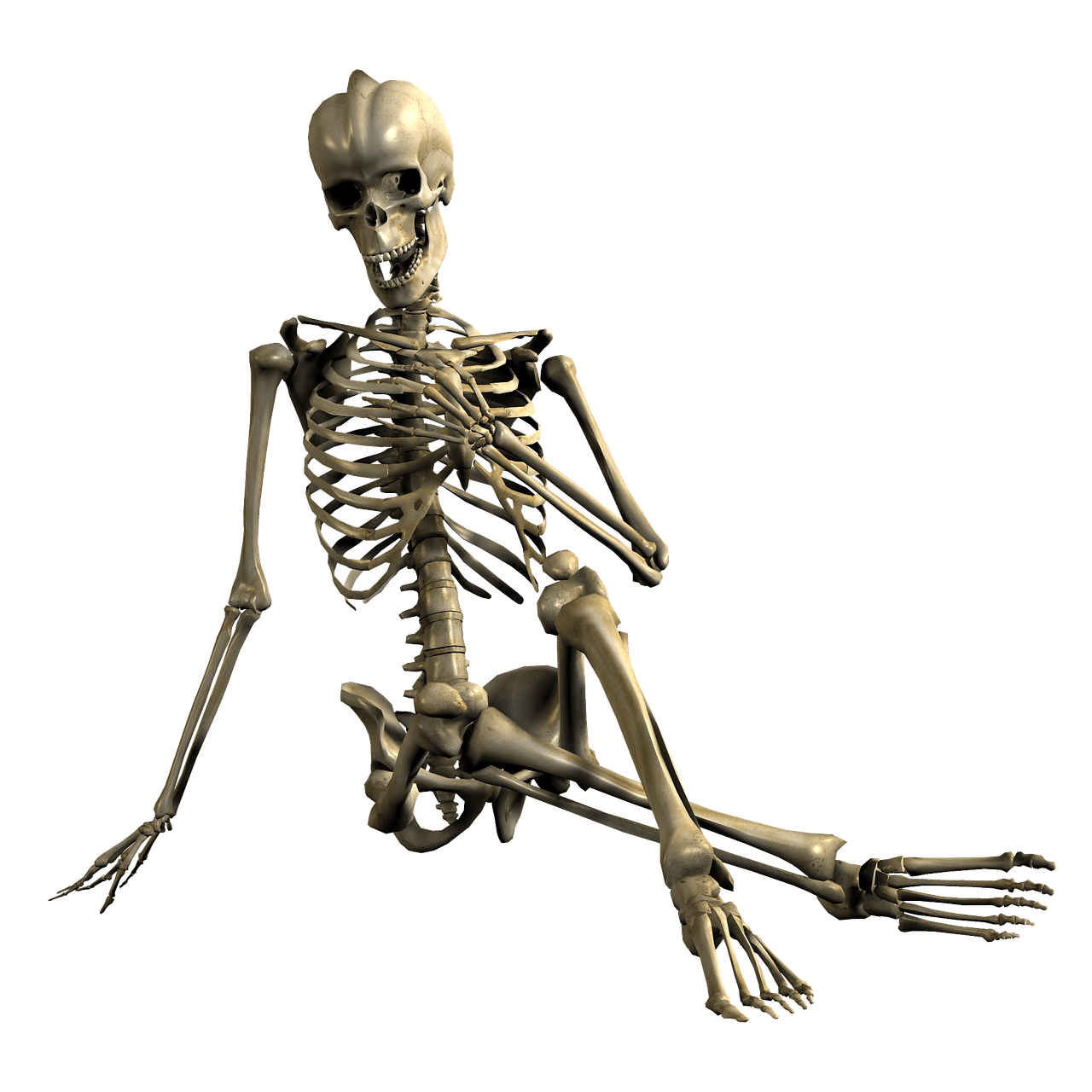 Skeleton Hand In Front Of Chest transparent PNG.