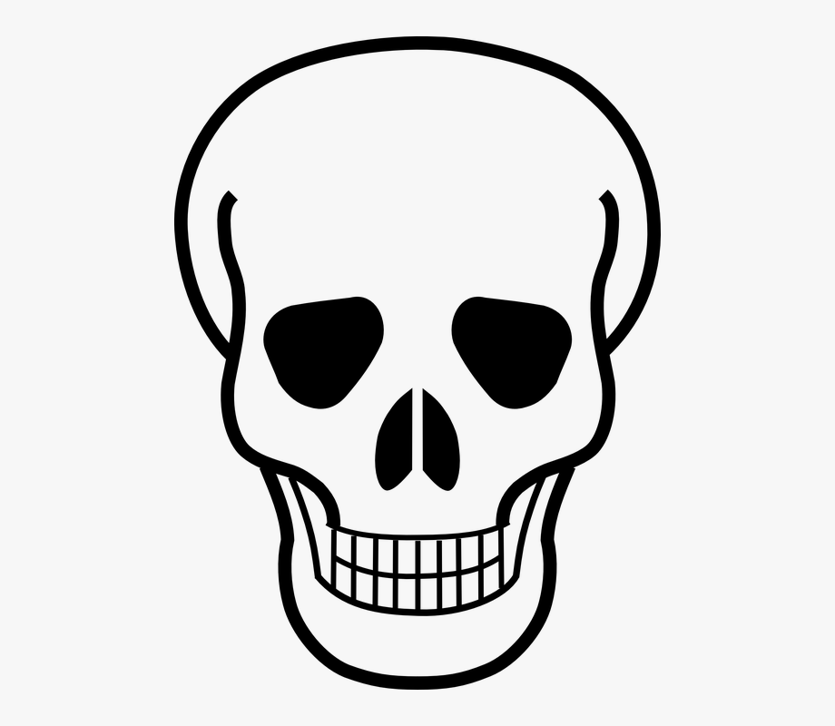 Skeleton Clipart Healthy Bone.