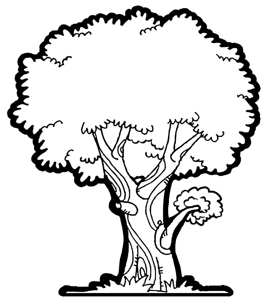 Tree Sketch Clip Art at PaintingValley.com.