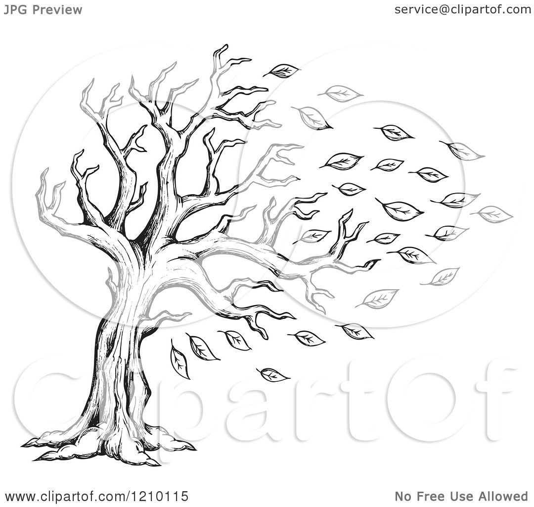 Cartoon of a Sketched Black and White Tree Being Stripped of.