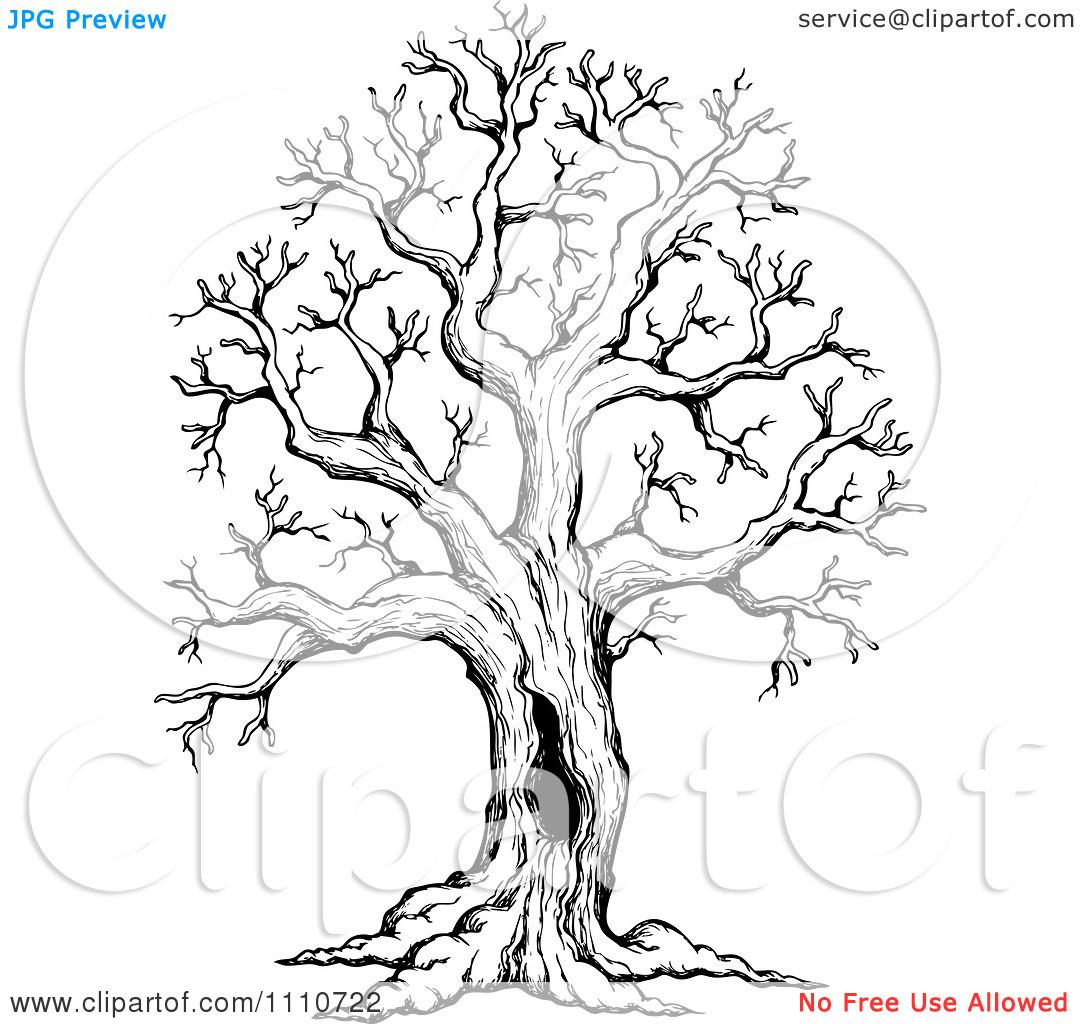 Simple Tree Line Art stock illustration Illustration of