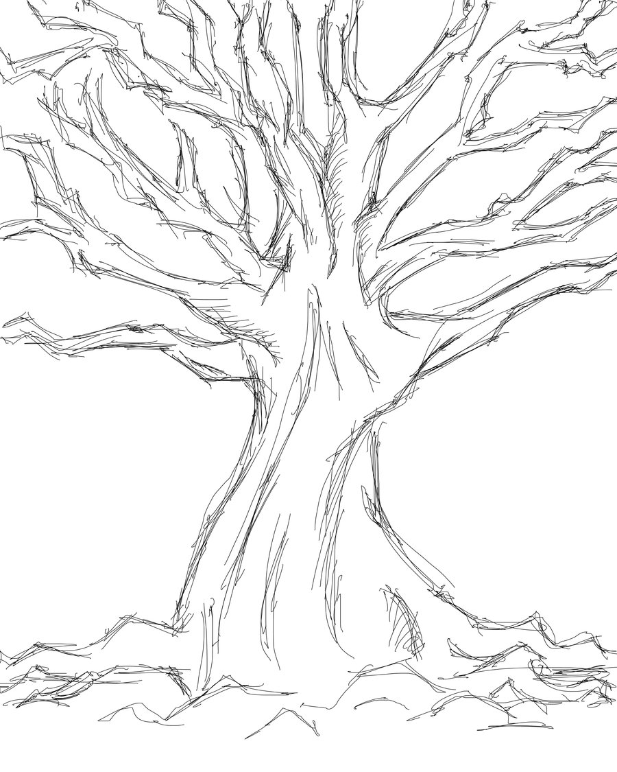 Tree Sketches Drawing.
