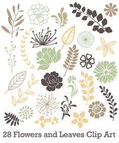 Flower and Leaf Design Elements Royalty Free Stock Vector Art.