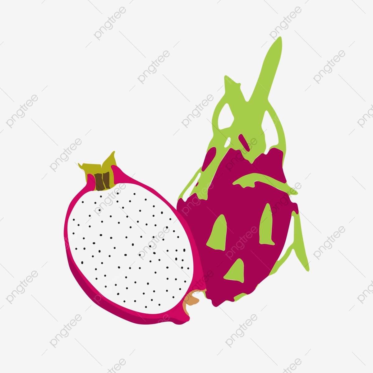 Summer Dragon Fruit Tropical Fruit Red Skin, Cut Open, White.