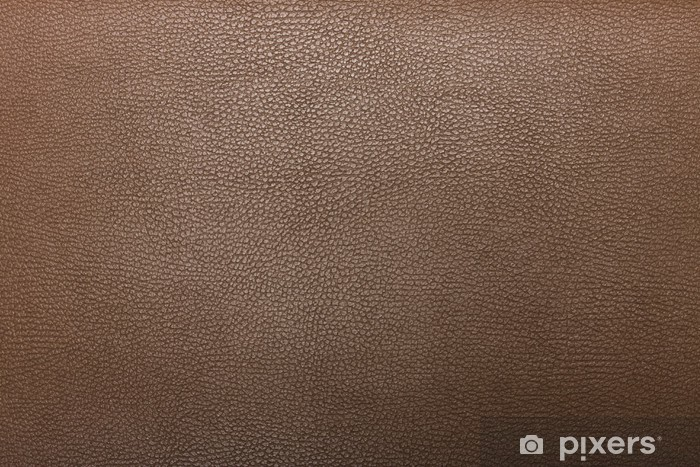 High resolution texture. Background. Skin. Wall Mural.