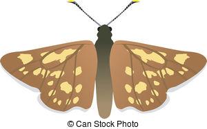 Skipper butterfly Illustrations and Clip Art. 46 Skipper butterfly.