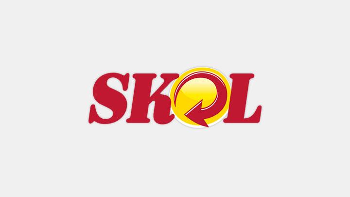 Logo SKOL.