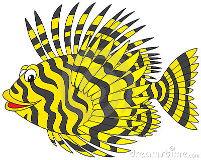 Rockfish Stock Illustrations.